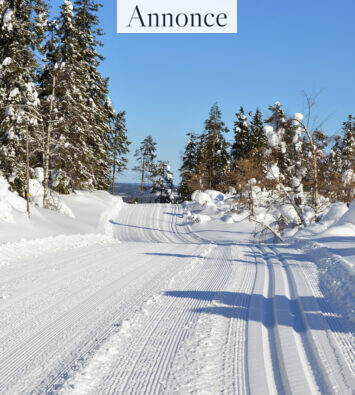 snow-3298238_1280
